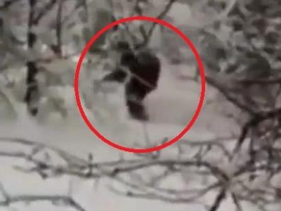 Video: V Rusku natočili yetiho. Už zasa